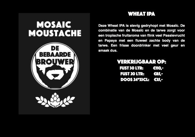 Mosaic Moustache.jpg